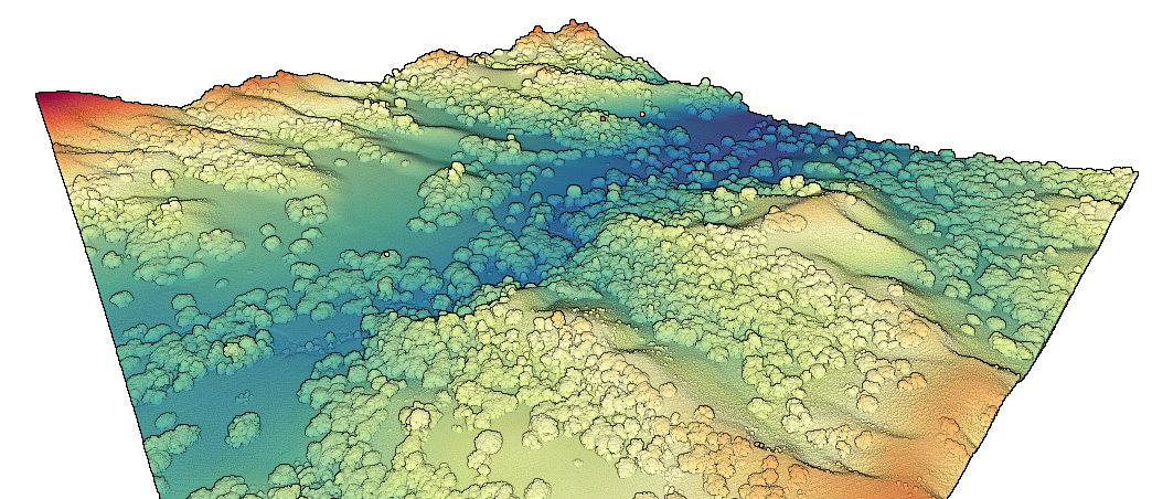 3D point cloud colored by elevation of the University of California Sedgwick Reserve.